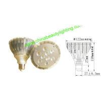Lumière LED d'entrée PAR LED / lampe LED / PAR38