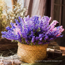 Factory price dried jasmine dried flowers jewelry dried flowers preserved