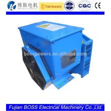 BOSS Brushless Generator BCI164A 6.5KW Generator Generator