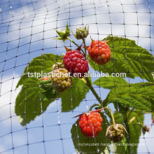 Extruded square agricultural anti bird protection net