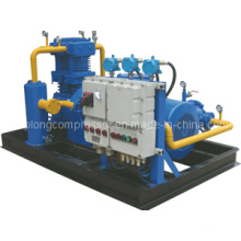 CNG Compressor LPG Compressor LNG Compressor Nitrogen Compressor Booster (Zw-3.0/10-16)