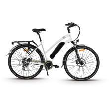 XY-PASSION Electric trekking bike