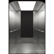Ascenseur de passager de Fujizy avec la petite pièce de machine