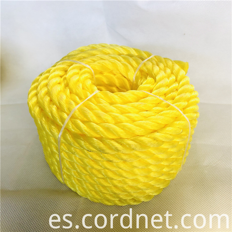 Pp Twisted Rope 1