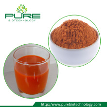 Goji berry powder liofilizado