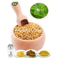 High Quality Fenugreek Seed Extract Furostanol Saponins, Fenugreek Saponins