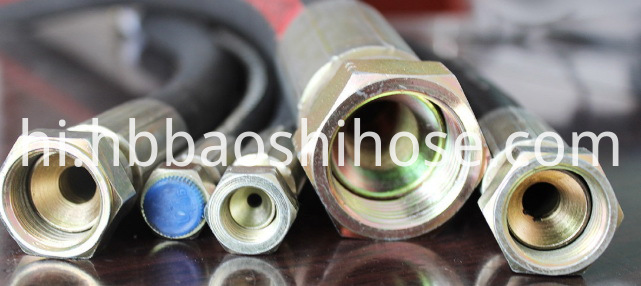Hydraulic Support Hose Assembly