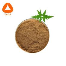 Poudre de feuille de Neem biologique Extrait de feuille de Neem Azadirachtine