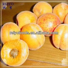 Paquetes de frutas congeladas