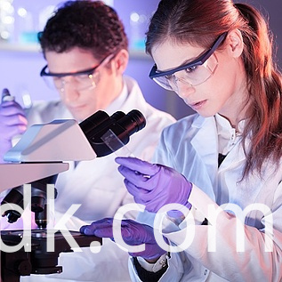 Health Care Professionals In Lab Thinkstockphotos 500924885