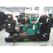 Baifa Cummins Série 220kVA Power Diesel Gerador Set