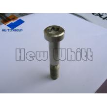 High-End-Ti6AI4V Titanium Torx Flachkopfschrauben
