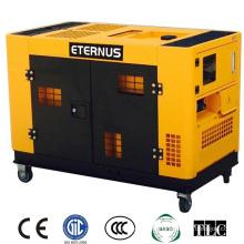 Movable Engine Diesel Generator 10kw (BM12T)