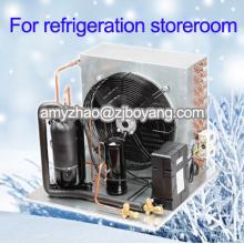 mini entreposage au froid pour la nourriture de supermarché avec l'unité de condensation de compresseur de 3HP