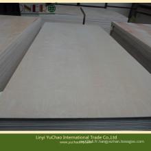 Carb Fsc Certificate Contreplaqué de bouleau blanc pour meubles
