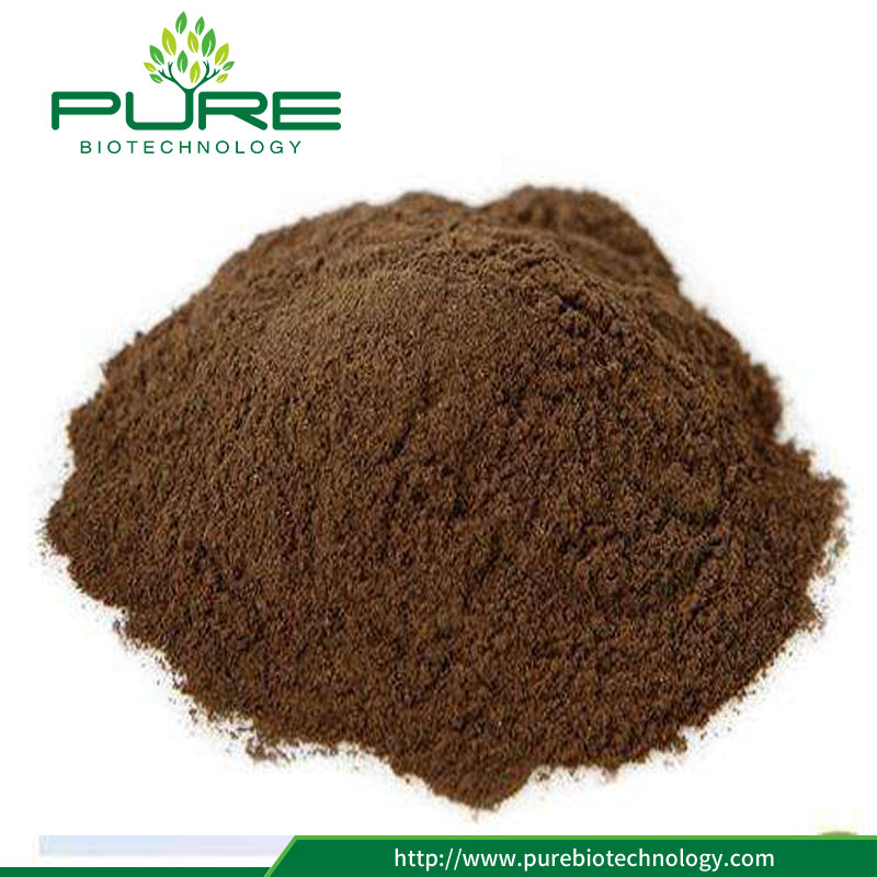 Schisandra Extract Powder