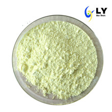 Herbal Products Wholesaler Kaempferia Galanga Extract Kaempferol Powder 520-18-3