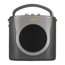 Portable Amplifier with Echo, USB, SD, and Wireless Handheld Mic