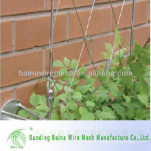stainless steel wire rope mesh net for green wall cladding