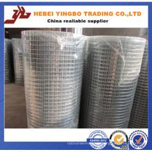 PVC-beschichtetes geschweißtes Maschendraht (ISO9001)
