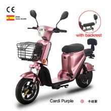 Bicicleta eléctrica E-bike 350w Energy