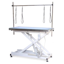 Electric height adjustable dog grooming table