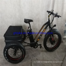 Ebike Fat Tire E Trike Three Wheels Adult Cargo Electric Tricycle