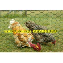 Lower Price Hexagonal Wire Mesh (Chiken Nettting)