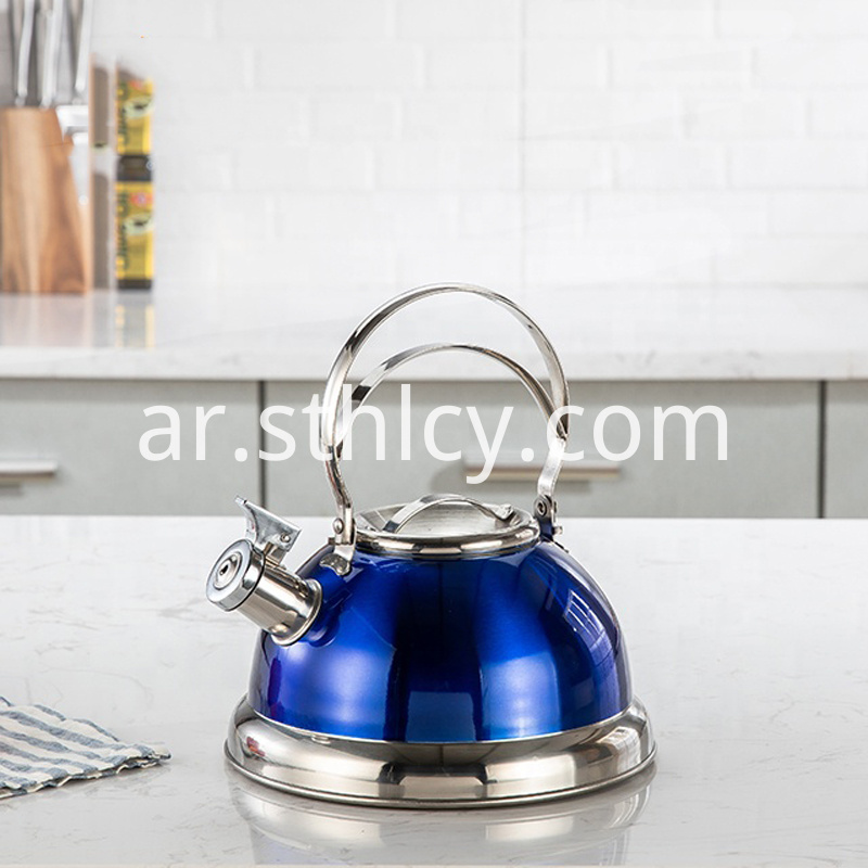 Belly Shaped Pot Stainless Steel