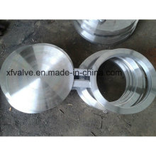ANSI Forged Stainless Steel or Carbon Steel Blind Flange