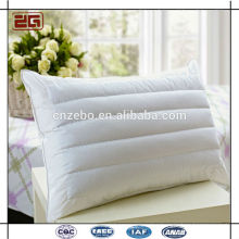 Hot Selling Wholesale Hotel or Home Used Health Buckwheat Pillows for Sale