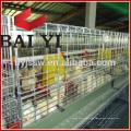 Élevage de volaille populaire utilisé cage de poussin de type H, cage de poussin de bébé