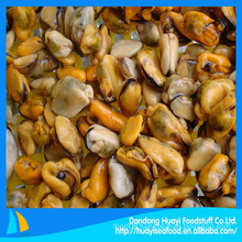 frozen cooked green mussel meat