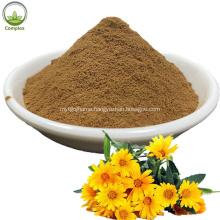 100% natural herbal chrysanthemum plant extract