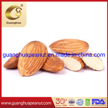 Good Quality and New Crop Almonds Without Shell