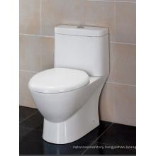 Sanitary Ware Ceramic One-piece Toilet (TB346M/L)