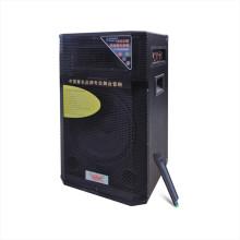 "12 ""Active Professional Speaker 610t"