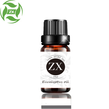 100% pure and natural eucalyptus oil for food and medical products