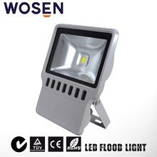 110V-220V IP65 LED Flood Light with UL 100W