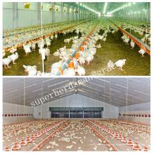 Equipamento de alojamento de aves de capoeira para frango de frango