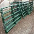 Cerca de trilhos de gado galvanizado de tubo redondo para rancho