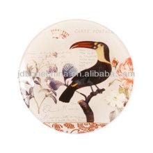 Colorido natureza mão pintura flor pássaro insetos porcelana óssea china oval mostrando cerâmico mostrar pratos