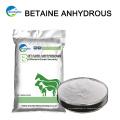 China Animal Feed Aditivo Betaine Factory 107-43-7