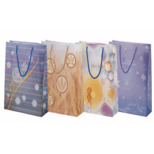 Chinese Supplier Fashion and Practical Sh3019-Sh3021 Hand Shopping Bag