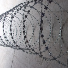 antique concertina barbed razor wire