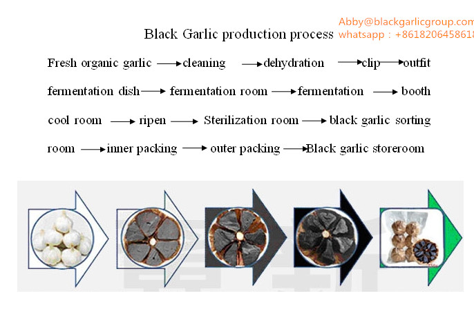 black garlic product process