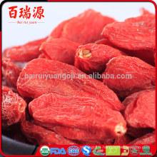 Lycium barbarum extrait de fruits goji superfood commander baies de goji