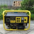 BISON (CHINA) Gerador portátil de Honda Produtor da fábrica Geradores do gás