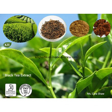 Black Tea Extract Theaflavins 25%, 40%, 60% (84650-60-2) for Cardiovascular Health and Cancer
