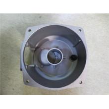 Pump Case of Water Pump (Wp-20)